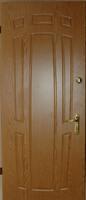Двери металлические МДФ глянец